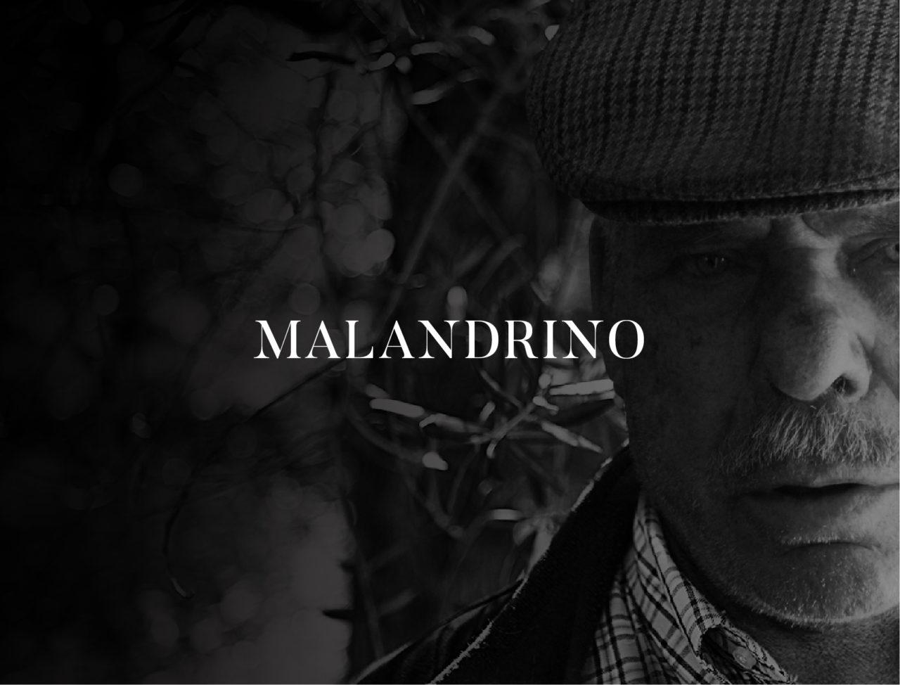 Olio Malandrino
